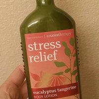 Bath & Body Works Aromatherapy Stress Relief Eucalyptus Tangerine Body Lotion 6.5 Oz. uploaded by Adisa J.