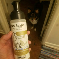 Wahl No-Rinse Oatmeal Formula Coconut Lime Verbena Pet Waterless uploaded by Kt E.