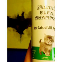 Natural Chemistry Natural Flea & Tick Shampoo for Cats uploaded by Megan K.