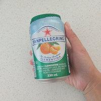 San Pellegrino® Clementina Sparkling Clementine Beverage uploaded by Nita C.