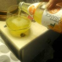 Gus Grown Up Soda Gus Grown-Up Soda BG14028 Grown-Up Soda Dry Valencia Orange - 6x4Pack uploaded by Emily A.