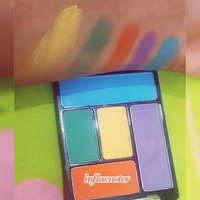 Wet n Wild Color Icon Eyeshadow Palette uploaded by Amany H.