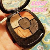 Wet n Wild Fergie Eye Shadow Palette uploaded by Skyler K.
