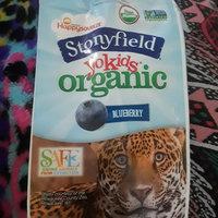 Stonyfield Organic YoKids Blueberry and Strawberry Vanilla Lowfat Yogurt - 6 PK uploaded by LaWanda W.
