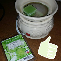 ScentSationals Cucumber Melon Fragrance Wax Cubes uploaded by Tayla T.