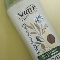 Suave Shampoo Avocado + Olive Oil 12.6Z uploaded by Gisselle C.