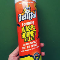 Bengal Chemical Bengal 97119 Foaming Wasp & Hornet Killer, 18 Oz uploaded by Becca H.