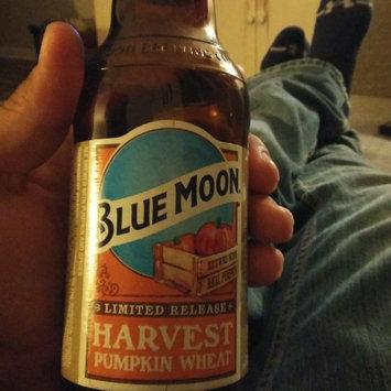 Photo of Blue Moon Seasonal Collection Harvest Pumpkin Ale uploaded by Derrick M.