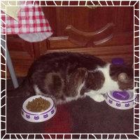 Friskies  Gravy Sensations Cat Food uploaded by Jamie P.