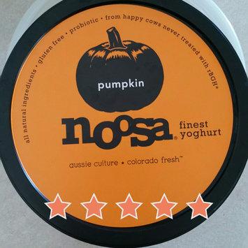 Photo of Generic Noosa Yoghurt Colorado Fresh Pumpkin Yogurt, 8 oz uploaded by Christina G.