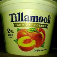 Tillamook® Farmstyle Greek Oregon Strawberry Strained Lowfat Yogurt 5.3 oz. Cup uploaded by Melissa B.