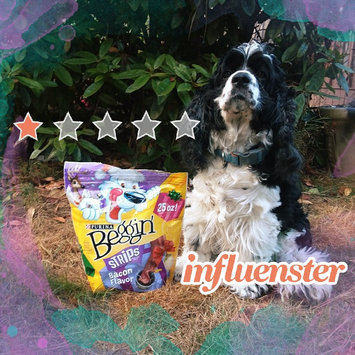 Photo of Purina Beggin' Strips Beggin' Strips Bacon Flavor Bacon Dog Snacks uploaded by kandiss J.