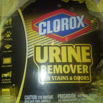Photo of CLOROX COMPANY, THE Clorox Urine Remover for Stains & Odors 32oz uploaded by kandiss J.