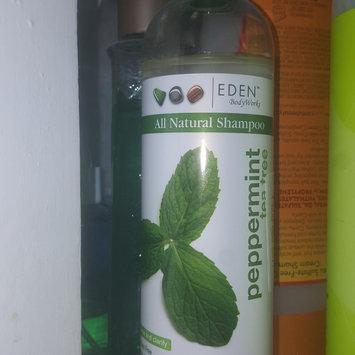 Photo of Eden Body Works EDEN BodyWorks Peppermint Tea Tree Shampoo uploaded by amanda m.