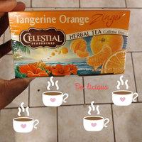 Celestial Seasonings® Tangerine Orange Zinger Herbal Tea Caffeine Free uploaded by LaLa W.