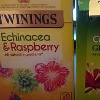 Twinings® Restoring Echinacea & Raspberry Tea Bag uploaded by Lisa W.