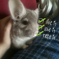 Oxbow POOF! Blue Cloud Chinchilla Dust uploaded by Carlee W.