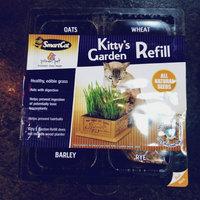 Smart Cat 3845 Kitty s Garden - Seed Refill Kit - Case of 4 uploaded by Auggie B.