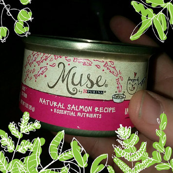 Photo of Muse by Purina Natural Salmon Recipe in Gravy Cat Food 3 oz. Can uploaded by Shalayna G.
