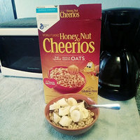 Honey Nut Cheerios™ Cereal 3.5 oz. Pouch uploaded by Kelly S.