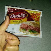 Buddig™ Original Honey Ham 16 oz. ZIP-PAK® uploaded by Shaina C.