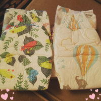 The Honest Co. Baby Diapers Size 1 uploaded by Sara T.