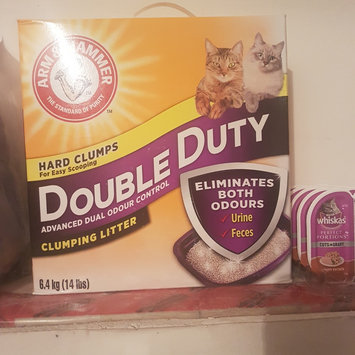 Photo of ARM & HAMMER™ Clump & Seal Complete Odor Sealing Clumping Litter Multi-Cat uploaded by Claudette F.