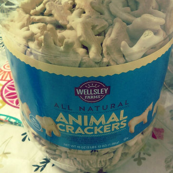 Photo of Wellsley Farms Natural Animal Crackers 45 oz uploaded by Leorys T.