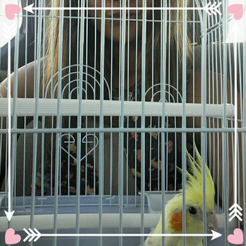 Photo of Sun Seed Kaytee Products Wild Bird Gold Spray Millet Treat uploaded by hayanne g.