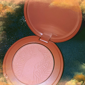 tarte Amazonian Clay 12-Hour Blush uploaded by Christianne S.