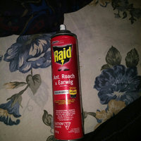 Raid Ant & Roach Killer Aerosol uploaded by Quvante A.