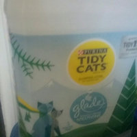 Purina Tidy Cats Limited Edition Winter Pine Clumping Litter 20 lb. Jug uploaded by Denise T.