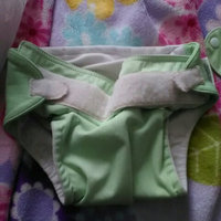 Bumgenius  Cloth Diapers uploaded by Becca L.