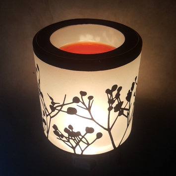 Photo of Scentsy Warmers uploaded by Alyssa H.