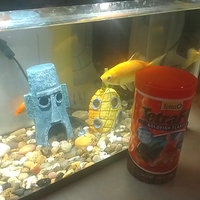 Tetra TetraFin Goldfish Flakes uploaded by Minerva C.