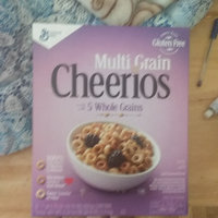 General Mills Multi Grain Cheerios Dark Chocolate Crunch uploaded by Manminder S.