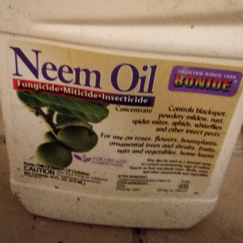 Photo of Bonide Products 025 Bon-Neem Neem Oil Insecticidal Soap, 32-oz. uploaded by Dione P.