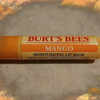 Burt's Bees Mango Lip Balm uploaded by Martha G.