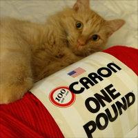 Spinrite NOTM327558 - Caron One Pound Scarlet Yarn uploaded by Jade T.