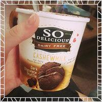 So Delicious® Cashew Milk Dark Chocolate Truffle Non-Dairy Frozen Dessert 1 pt. Tub uploaded by Sierra K.
