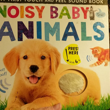 Photo of Touch and Feel Noisy Sound Books - Noisy Farm uploaded by Jean H.