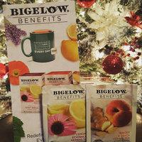 Bigelow® Assorted Green Tea 18 ct Box uploaded by Stephanie S.