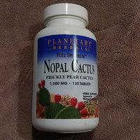 Planetary Herbals Full Spectrum Nopal Cactus 1,000 mg Tabs uploaded by KookHee K.