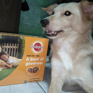 Photo of Pedigree® Complete Nutrition Adult Dog Food uploaded by EMILY R.
