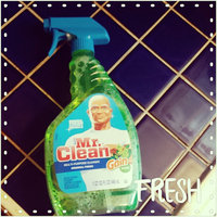 Mr. Clean with Gain Original Fresh Scent Multi-Surface Cleaner uploaded by Kristin R.