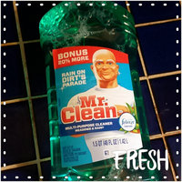 Mr Clean Mr. Clean Meadows & Rain Multi-Surface Cleaner with Febreze Freshness uploaded by Kristin R.