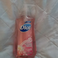 Dial® Antibacterial Hand Soap Himalayan Pink Salt uploaded by Chelsea C.