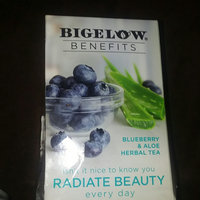Bigelow® Benefits Blueberry & Aloe Herbal Tea Bags 18 ct Box uploaded by Lakeshia R.