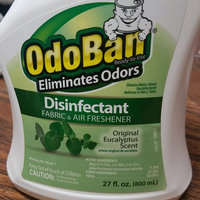 OdoBan Original Eucalyptus Scent Disinfectant Fabric & Air Freshener, 27 fl oz uploaded by Amanda C.