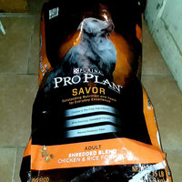 PRO PLAN® SAVOR® ADULT Shredded Blend Chicken & Rice Formula uploaded by Lakeshia R.